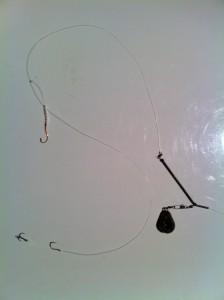 Pighvar m. orme krog